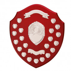 The Ultimate Annual Shield Award 405mm