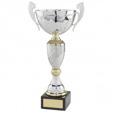 Century Cup Silver & Gold 275mm