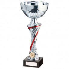Dominion Cup Silver & Red 275mm