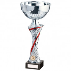 Dominion Cup Silver & Red 310mm