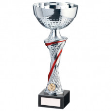 Dominion Cup Silver & Red 320mm