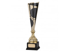 Multisport Trophies